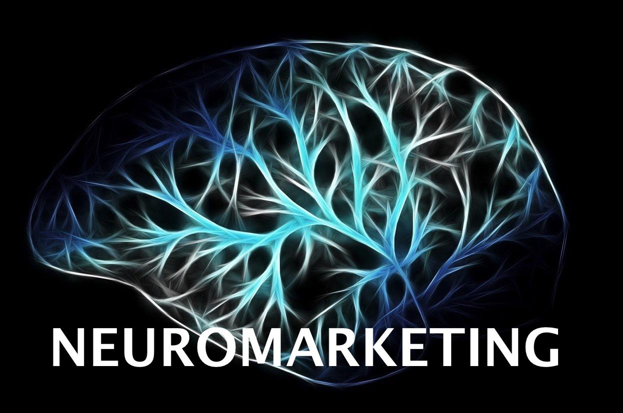 Cos'è il Neuromarketing?